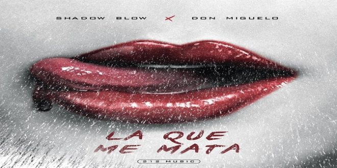 Shadow Blow Ft. Don Miguelo – La Que Me Mata